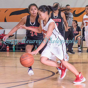 Girls JV vs Torres_12-2-16