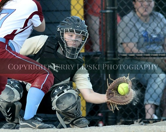 Lady Panthers Regional Playoff Game   June 3, 2014
