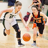 Record-Eagle/Brett A. Sommers Traverse City West's Maia Walters (11) steals the ball from Ludington's Mackenzie Luce (12) during Monday's girls basketball game at TC West High School. TC West won 44-38.