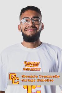 Glendale Community College Athletics