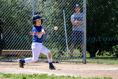 Gold Rush Little League 2014