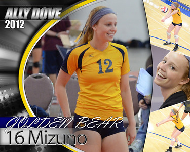 Golden Bear 16 Mizuno posters