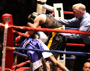 Golden Gloves Open Finals 030217