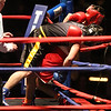 Golden Gloves boxing - week 3. Alexander Lynch of Grealish Boxing (Blue corner), front left, won by majority decision over Konstantinos Papatsas of Nonantum Boxing in 152 lb Novice bout. (SUN/Julia Malakie)