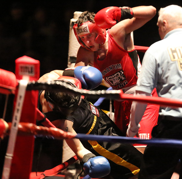Golden Gloves boxing - week 3. Alexander Lynch of Grealish Boxing (Blue corner), recovere to win by majority decision over Konstantinos Papatsas of Nonantum Boxing in 152 lb Novice bout. Referee is Jackie Morrill. (SUN/Julia Malakie)