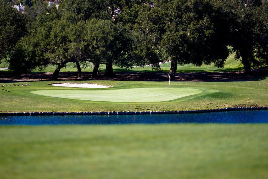 IMAGE: http://www.joonrhee.com/Sports/Golf-at-Coto-De-Caza-2182012/i-qXL4bZ8/0/XL/AT2C3062-L.jpg