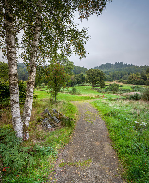 8th Aberfoyle-2