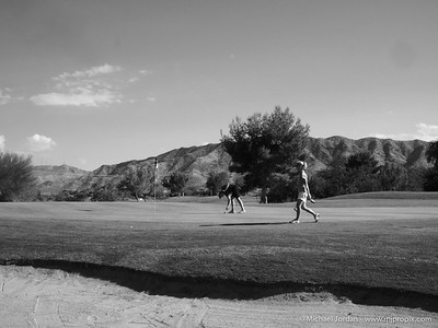 Aguila State Practice Round