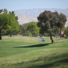 untitled shoot-5000<br /> Teeing off on the 15th hole of the Westin.
