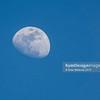 Moon Over Rec 18