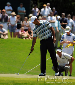 Tiger Woods tips his ball in the hole at the 1st hole of the 2009 The Players held May 4-10 in Ponte Vedra Beach, Florida.