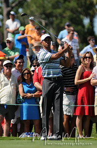 Tiger Woods watches his shot on the 16th hole at the 2009 The Players held May 4-10 in Ponte Vedra Beach, Florida.