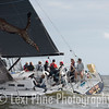 """The Mod Mumm 36, """"Cheetah,"""" moments after the evening start of the Governor's Cup Regatta last Friday."""
