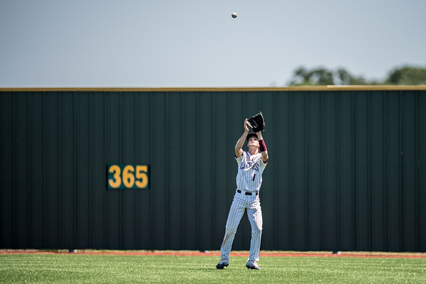Steers tame the Lions 7 to 3 in 1st game of Bi-District playoff series