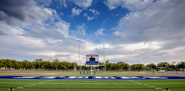NEWton Field