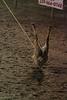 GSYR 05 18 2007 Tri State Rodeo A 365