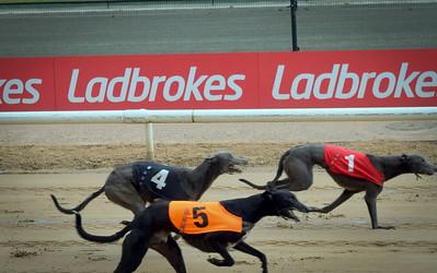Monmore Green Greyhound Racing
