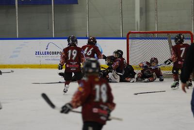 20100123_hockey