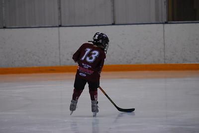 201002013hockey2