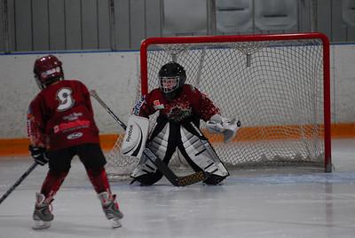 20100319hockey
