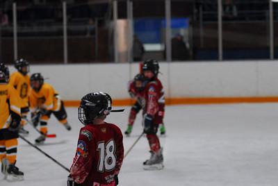 20100320_hockey