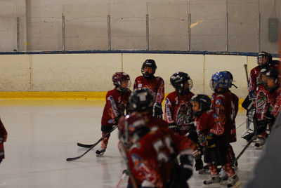Grizzly Hockey 2009