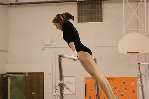 Gymnastics Meet 12/08/08