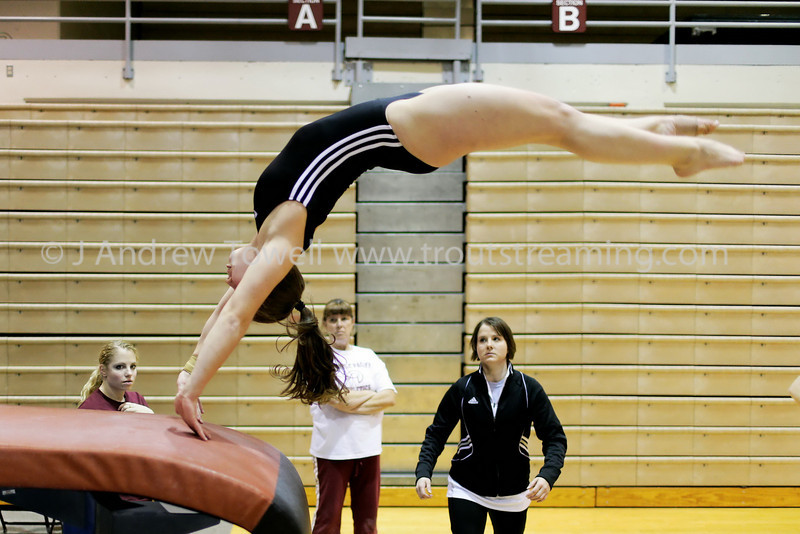 """Images from the 2009 Seattle Pacific University Falcons gymnastics season at Brougham Pavilion in Seattle Washington in the NCAA west region gymnastics action. 4x6 prints will be made 'as-is' and are priced at a substantial discount, all other sizes and products will be post-processed by hand to maximize image quality (and reflect my usual pro pricing).  Small digital images for web use are available on request with any print purchase. Images may be used for personal viewing, but may not be used for any commercial purposes or altered in any form without the express prior written permission of the copyright holder, who can be reached at troutstreaming@gmail.com Copyright © 2009 J. Andrew Towell   <a href=""""http://www.troutstreaming.com"""">http://www.troutstreaming.com</a> . <br /> <br /> As always, feedback - good and bad - is always appreciated!"""