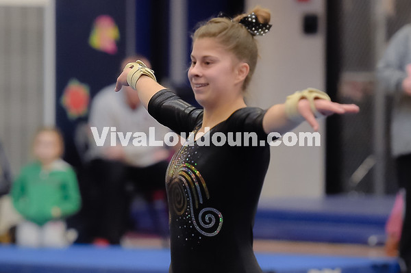 Gymnasitcs:  2017 5A-6A Winter Championships 2.18.2017 (by Michael Hylton)