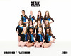 2016 Peak XCEL TEAM  DIAMOND PLATINUM