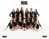 2016 Peak XCEL TEAM  GOLD