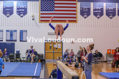 Gymnastics,Briar Woods,Potomac Districts