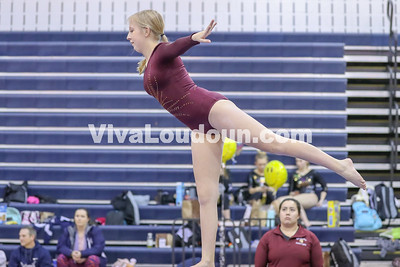 Gymnastics,Broad Run,Potomac Districts