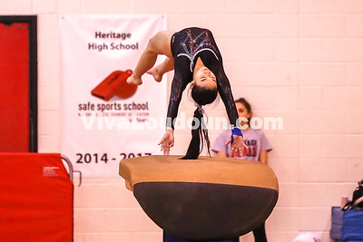 Gymnastics, Dominion, Dulles Districts