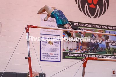 Gymnastics, Loudoun Valley, Dulles Districts