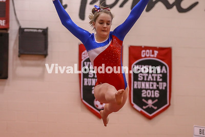Gymnastics, Park View, Dulles Districts