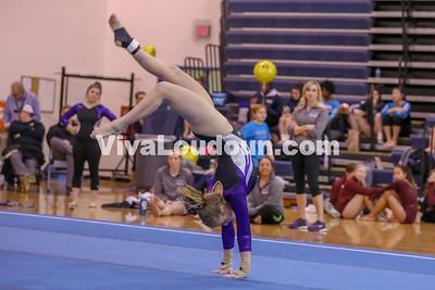Gymnastics,Potomac Falls,Potomac Districts