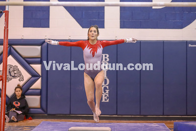 Gymnastics,Rock Ridge,Potomac Districts