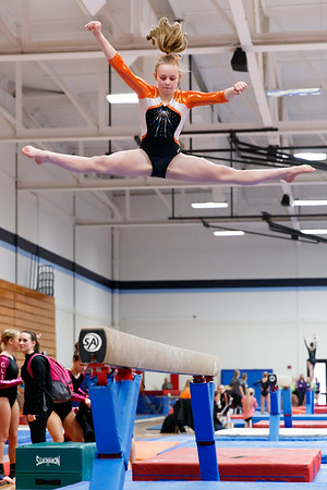 2017 Wiscinson YMCA State Gymnastics Meet