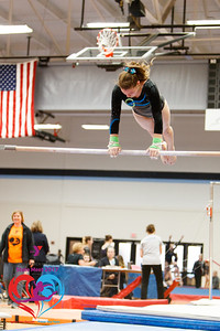 2017 Wisconsin YMCA State Gymnastics Meet
