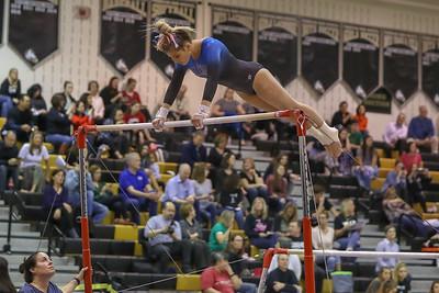 Gymnastics Briar Woods