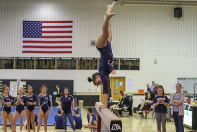 Gymnastics John Champe
