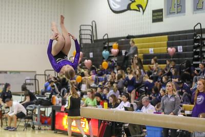 Gymnastics Potomas Falls