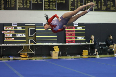 Gymnastics Rock Ridge