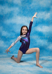 0134_G2-GymnasticsMarch 13, 2017