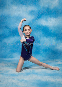 0114_G2-GymnasticsMarch 13, 2017