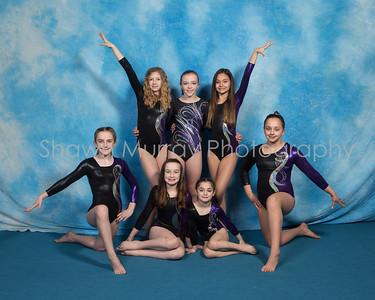 0133_G2-Gymnastics_032818