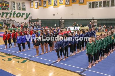 Gymnastics,Loudoun Valley