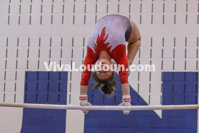 Gymnastics,Rock Ridge,Potomac Districts