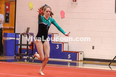 Gymnastics, Woodgrove, Dulles Districts